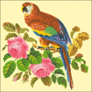 Medium Parrot and Roses- Pink Roses