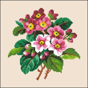 aster bouquet #2
